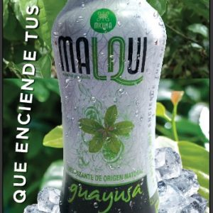 Energy drink of guayusa
