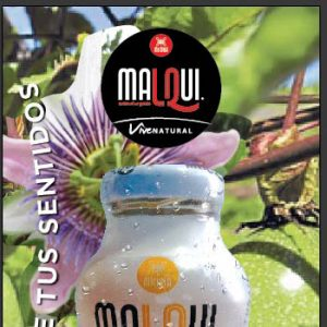 Guayusa, the drink that brings vitality